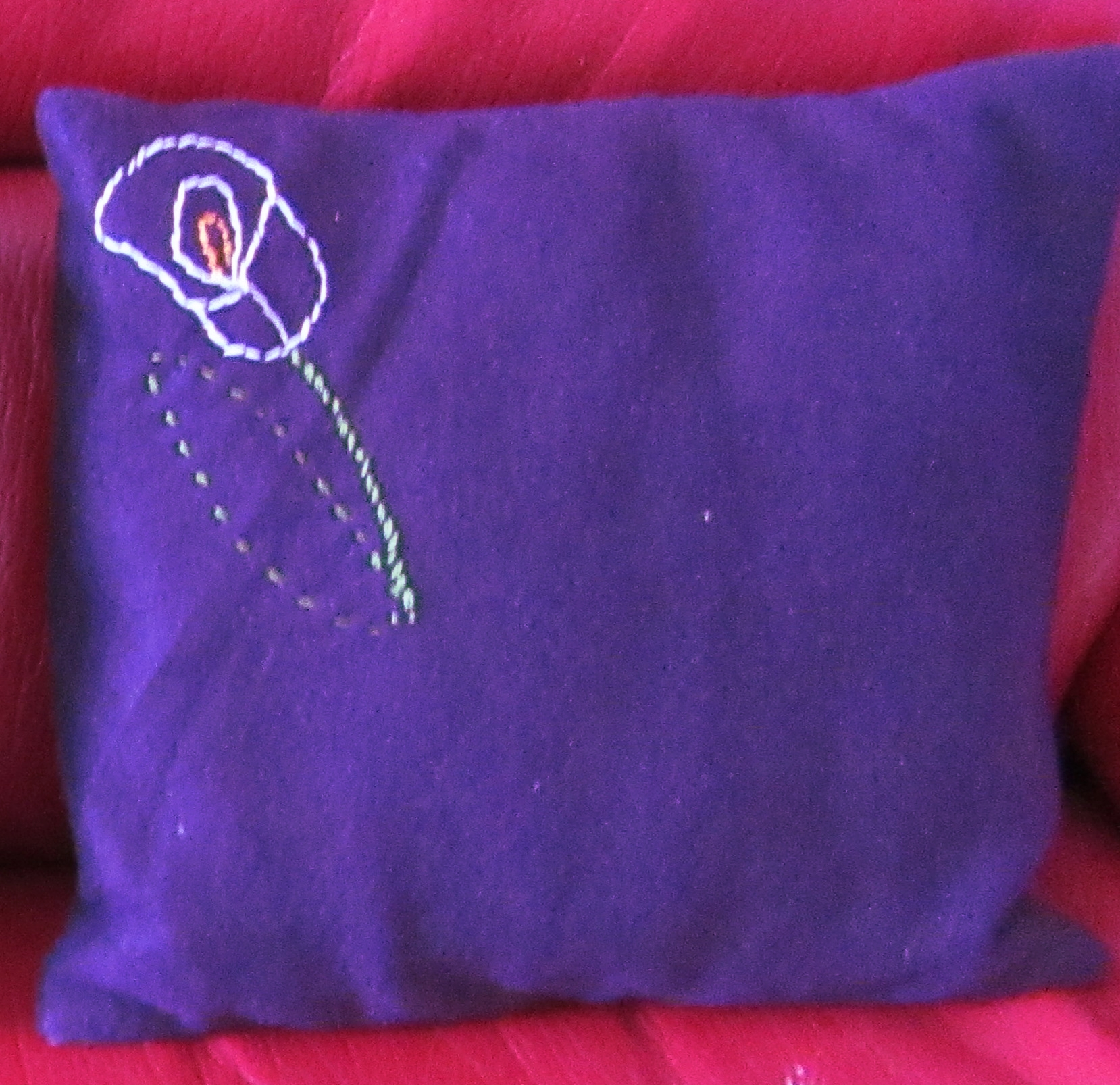 Coussin arome