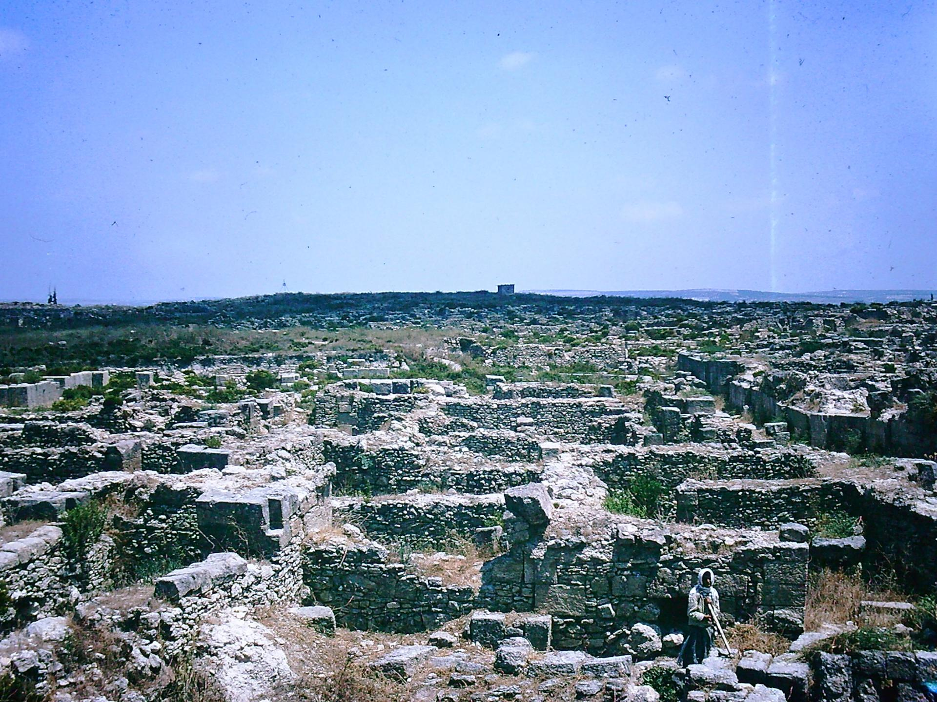 Ougarit 1